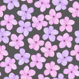 A seamless floral pattern with watercolor hand-drawn tender purple and pink spring flowers. Painted on a dark background Stock Image