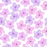 A seamless floral pattern with watercolor hand-drawn tender purple and pink spring flowers Royalty Free Stock Images