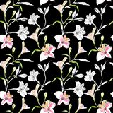Seamless floral pattern. Pattern with watercolor and ink graphics flowers on black background. Alstroemeria. Seamless. Pattern with hand drawn plants. Herbal stock illustration
