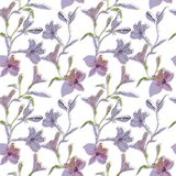 Seamless floral pattern. Pattern with watercolor and ink graphics flowers on white background with purple shades stock illustration