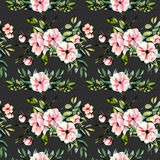 Seamless floral pattern with watercolor pink flowers and eucalyptus branches bouquets. Hand drawn on a dark background Royalty Free Stock Photos