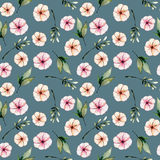Seamless floral pattern with watercolor pink flowers, green leaves and branches. Hand drawn isolated on a dark green background Royalty Free Stock Image