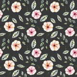 Seamless floral pattern with watercolor pink flowers, green leaves and branches. Hand drawn isolated on a dark background Stock Image