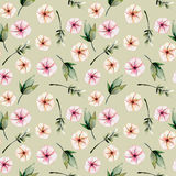Seamless floral pattern with watercolor pink flowers, green leaves and branches. Hand drawn isolated on a grey background Stock Image