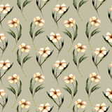 Seamless floral pattern with watercolor pink flowers. Hand drawn isolated on a grey background Royalty Free Stock Photography