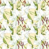 Seamless floral pattern. Watercolor white lilies, hand drawn botanical illustration of flowers. Seamless floral pattern. Watercolor white lilies, hand drawn Stock Photo