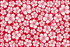 Seamless floral pattern whit hibiscus vector illustration