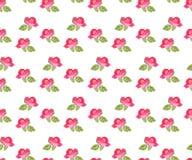 Seamless floral pattern on white background. Botanical illustration Stock Images