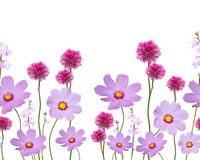 Seamless floral pattern. On white background Royalty Free Stock Photo