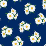 Seamless floral pattern with white flower Royalty Free Stock Image