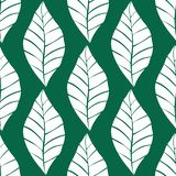 Seamless floral pattern with white shabby hand drawn leaves on turquoise background. Nature vector background. Vector simple ornament vector illustration