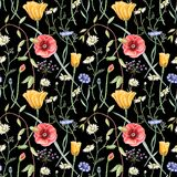 Seamless floral pattern with wildflowers on dark background. Hand drawn watercolor illustration. Vector Illustration