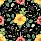 Seamless floral pattern with wildflowers on dark background. Hand drawn watercolor illustration. royalty free illustration