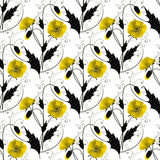 Seamless floral pattern with yellow poppies on white background Stock Image
