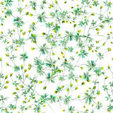 Seamless floral pattern with yellow wildflowers Royalty Free Stock Images