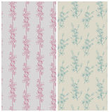 Seamless floral patterns. Hand drawn cherry flowers. Vector illustration Stock Image