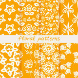 Seamless floral patterns Royalty Free Stock Images