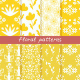 Seamless floral patterns Royalty Free Stock Image