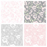 Seamless floral patterns. Vector seamless floral patterns in soft gray and pink tones Stock Photo