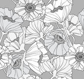 Seamless floral poppy pattern Stock Photos