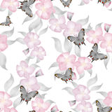 Seamless floral romantic spring pattern background flowers ornam Royalty Free Stock Photo