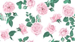 Seamless Floral Rose Pattern with Leaves. stock illustration