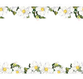 Seamless floral strip frame with white flowers. Watercolour border. Foral pattern with white flowers magnolia. Watercolor Royalty Free Stock Photo