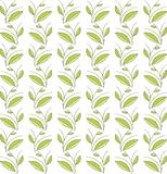 Seamless floral texture. Green leaves and branches, thin black lines on a white background Royalty Free Stock Image