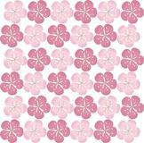 Seamless floral texture. Pink sakura flowers on white background. Vector Royalty Free Stock Photo