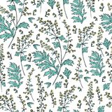 Seamless floral vector pattern Artemisia vulgaris, wormwood common hand drawn colorful illustration isolated on white. Background, Also called absinthium Stock Images