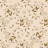 Seamless floral vector pattern for disign. Stock Images