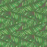 Seamless floral vector pattern inspired by leaves. Of tropical plants and nature, palm trees Stock Images