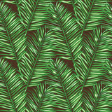 Seamless floral vector pattern inspired by leaves Royalty Free Stock Image