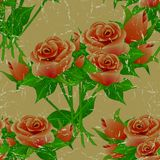 Seamless floral vintage aged pattern with roses. Stock Image