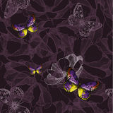 Seamless floral violet background with butterflies. Vector illus Royalty Free Stock Photos
