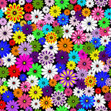 Seamless floral vivid pattern. With colorful flowers on black(vector Royalty Free Stock Photography