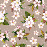 Seamless floral wallpaper with aquarelle painted spring cherry or apple flowers on brown background  dots design Stock Photo