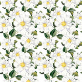 Seamless floral wallpaper with white flowers magnolia, peonies. Watercolour stock illustration