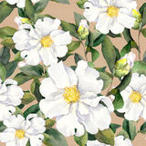 Seamless floral wallpaper with white flowers magnolia, peonies. Watercolour Royalty Free Stock Image