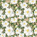 Seamless floral wallpaper with white flowers magnolia, peonies. Watercolour Stock Image