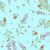 Seamless floral watercolor cowberry and salvia flowers pattern. Seamless floral pattern with cowberry and salvia flowers, hand drawn in watercolor on a blue Royalty Free Stock Image