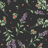 Seamless floral watercolor cowberry and salvia flowers pattern. Seamless floral pattern with cowberry and salvia flowers, hand drawn in watercolor on a dark Stock Photos