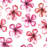 Seamless floral watercolor ornament Stock Photos