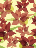 Seamless flower background Royalty Free Stock Photo