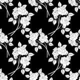 Seamless Flower Background Royalty Free Stock Photo