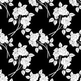 Seamless Flower Background. Seamless Floral Background, White Contour Flowers Roses Isolated on Black Background. Vector Royalty Free Stock Photo