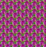 Seamless Flower Background. Seamless background of purple flowers Stock Photos