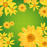 Seamless flower & leaves pattern background Royalty Free Stock Image