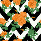 Seamless flower orange roses pattern with horizontal zig zag. Black white Royalty Free Stock Images