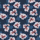 Seamless Flower Orchid  Pattern Stock Photography